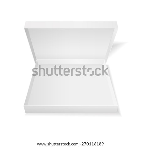 Opened cardboard pizza box isolated on white background. Raster version - stock photo