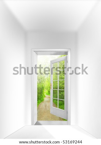 Opened door to early morning in green forest - conceptual image - business metaphor.