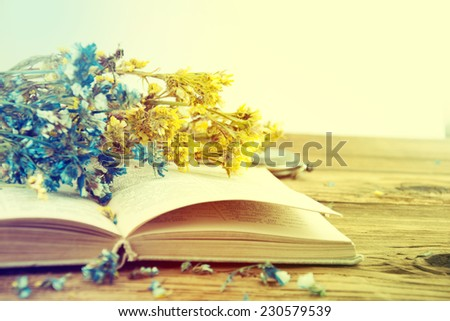 Opened old book on dry flower background. - stock photo