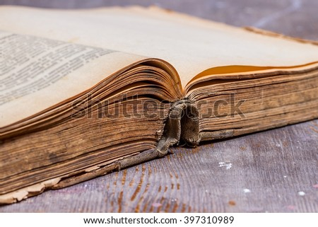 Opened old book on rustic  table