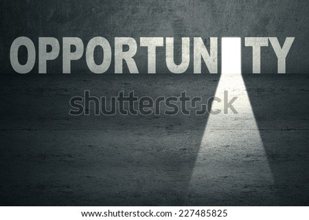 Opened opportunity door with bright light