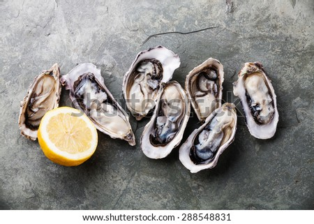 Opened Oysters on stone slate plate with lemon - stock photo
