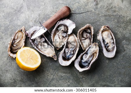 Opened Oysters on stone slate plate with lemon and oyster knife - stock photo