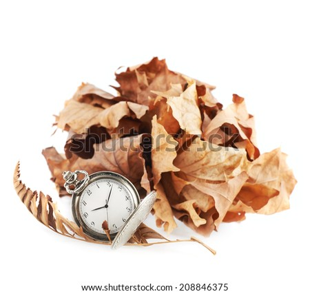Opened pocket watch next to a pile of a dried maple leaves, isolated over the white background - stock photo