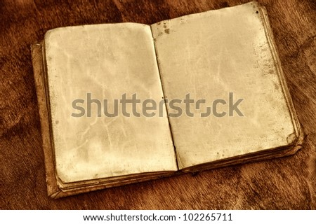 Opened vintage book with blank pages. - stock photo