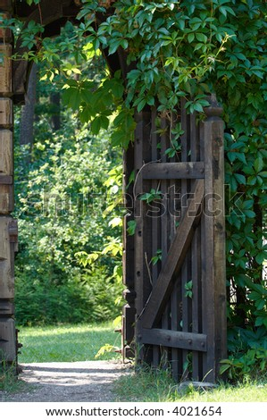 Opened wooden gate decorated with green climbing plant. - stock photo