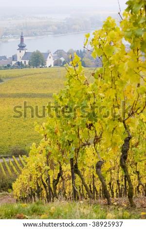 Oppenheim, Rheingau, Germany - stock photo