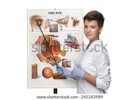 Optician or oculist woman telling about structure of the eye - stock photo