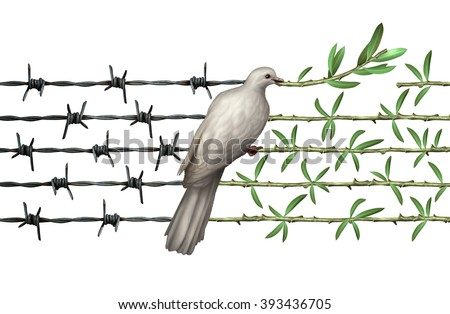 Optimism concept and diplomacy hope symbol as a dove on barbed wire to olive branches as an icon for humanity and a global safer world or a greeting for earth day isolated on white. - stock photo