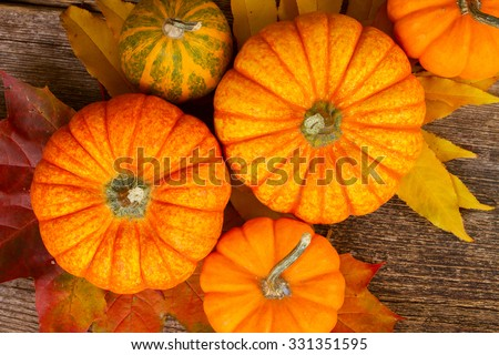 orange and green  pumpkins with fall leaves on wooden textured  table  - stock photo