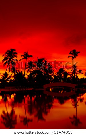 Orange and red sunset over sea beach with palms Dominican republic