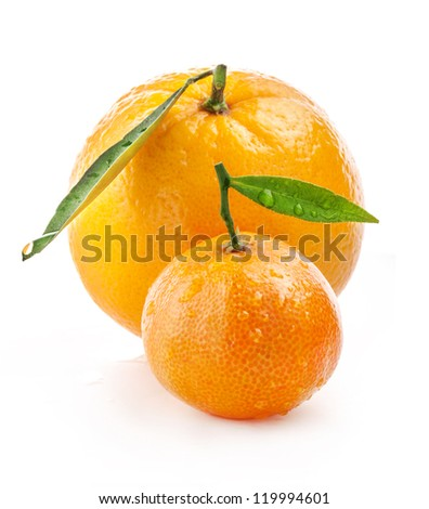 Orange and tangerine with water drops isolated on white background - stock photo