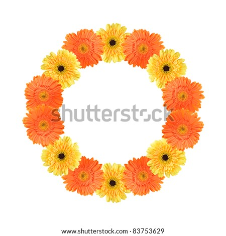 Orange and yellow daisy-gerbera flowers create a circle frame on white background - stock photo