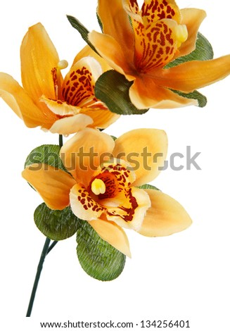 orange artifical flowers isolated on white - stock photo