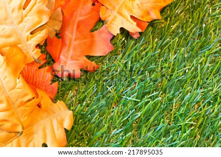 Orange Autumn Leaves on Green Grass with Copyspace as seen from Above - stock photo