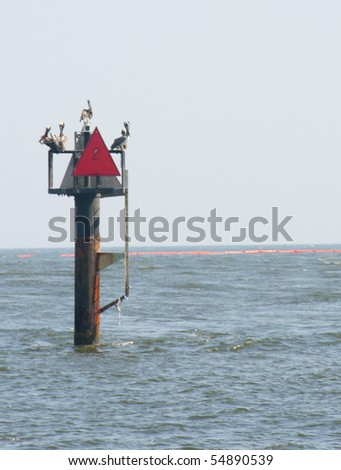ORANGE BEACH, AL - JUNE 8: Pelicans perch near an oil boom placed in Perdido Pass on June 8, 2010 in in Orange Beach, AL as the BP oil slick threatens wildlife and tourism in the vacation resort. - stock photo