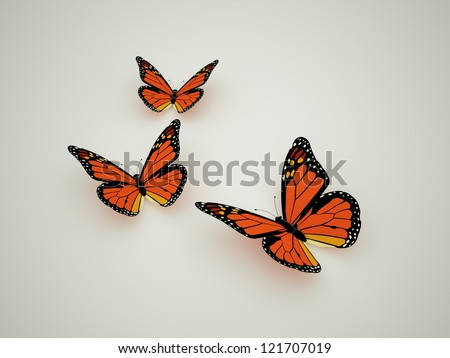 Orange butterfly concept - stock photo