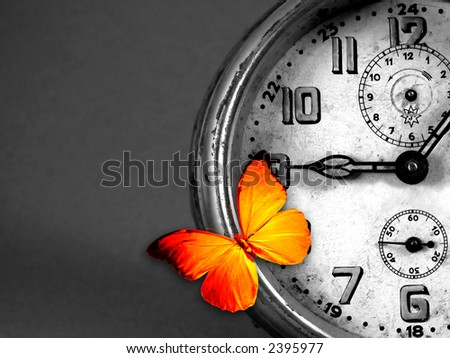 orange butterfly resting over an old vintage clock