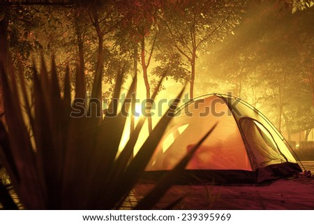 Orange camping tent set up in summer forest - stock photo