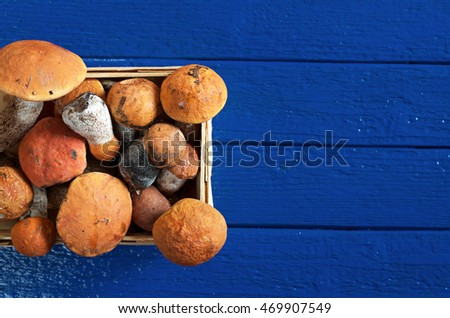 Orange-cap boletus mushrooms in basket on blue wooden background, top view. Space for text