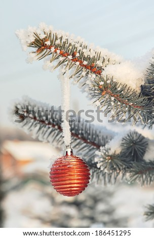 Orange Christmas ball on a snow-covered tree branch - stock photo