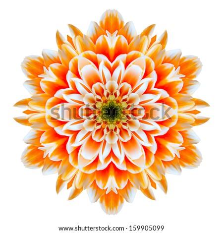 Orange Chrysanthemum Mandala Flower Kaleidoscope Isolated on White Background - stock photo