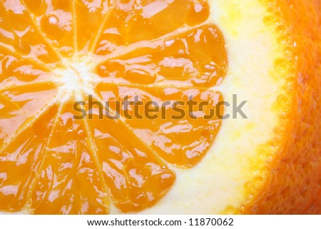 orange close-up - stock photo