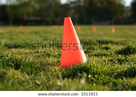 Orange cone in grass - stock photo