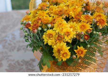 Orange flower make into a bouquet and wrap in orange silk. - stock photo