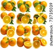 Orange fruits - stock photo