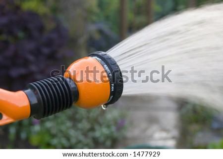 orange garden hose with adjustable nozzle watering garden in early evening. - stock photo
