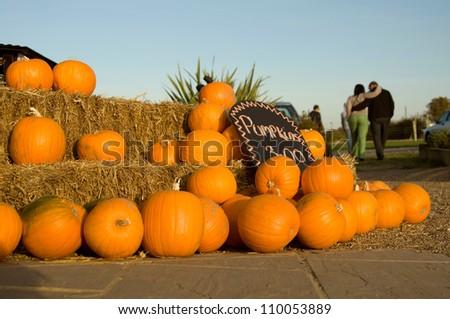 Orange Halloween Pumpkins for sale outside farm shop - stock photo