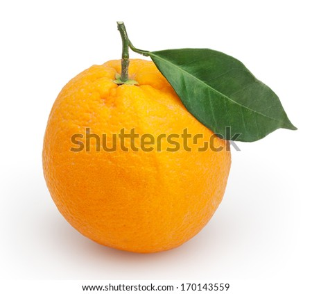 Orange isolated on white background with clipping path - stock photo