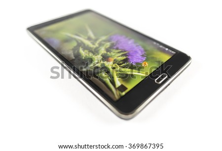 Orange ladybug on black tablet - Close-up image with a cute orange ladybug walking on a black tablet, that displays a colorful flower photography, on white background.  - stock photo