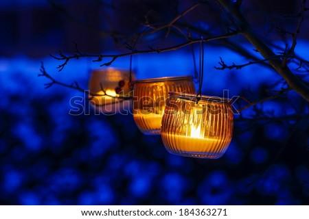 Orange lantern hanging on a branch - stock photo