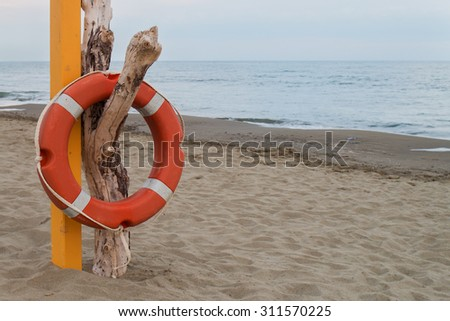 orange lifebuoy hanging on a dry dead trunk near a pink pole on a sandy beach sea and sky in background