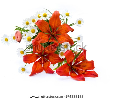 Orange Lilies and daisy - stock photo