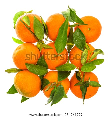Orange mandarine with green leaves and water drops. Top view of tangerine - stock photo