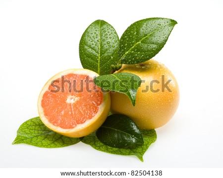 Orange on white background with leafs - stock photo
