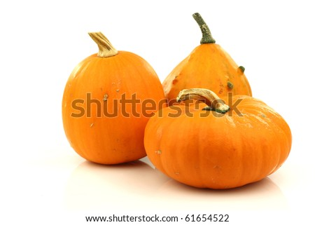 orange ornamental pumpkins on a white background