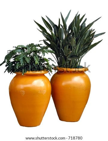 Orange planters with plants isolated on a white background