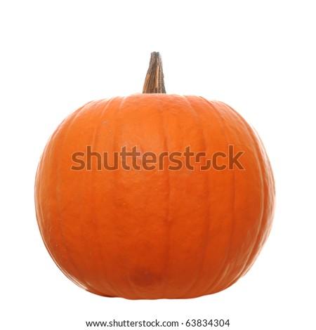 Orange pumpkin  isolated on a white background - stock photo