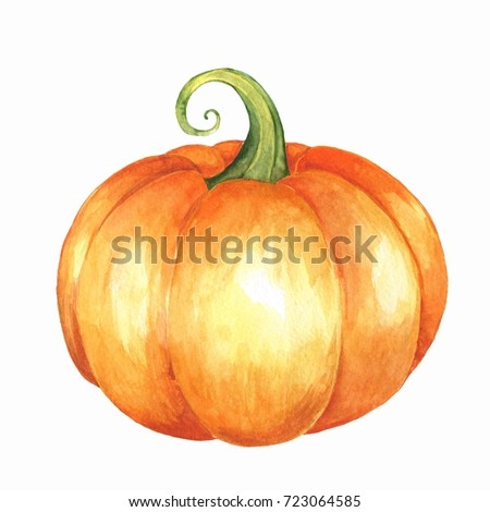Orange pumpkin. Isolated on white background. Watercolor illustration