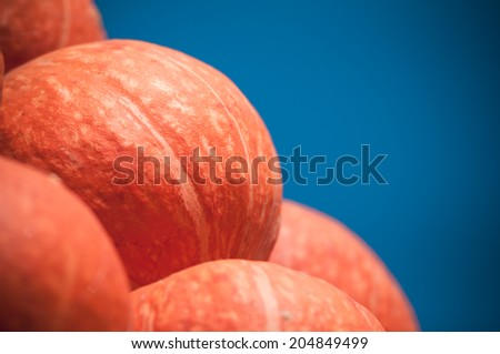 Orange pumpkins on blue sky background - stock photo