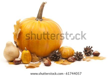 orange pumpkins with chesnuts for halloween decoration - stock photo