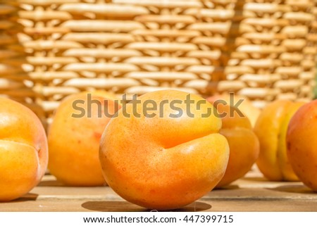 Orange ripe apricots on a wooden table in the garden on a sunny summer day on blurred background of a wicker basket, close up - stock photo