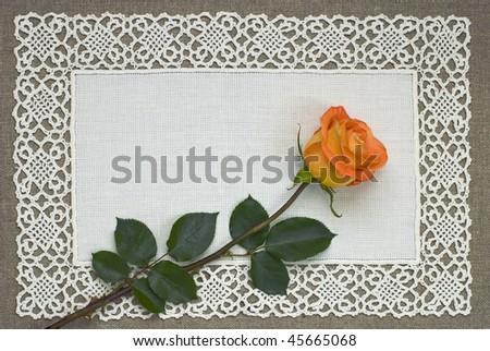 Orange rose on a handmade lace doily - stock photo