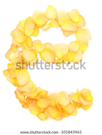 orange rose petals forming letter e, isolated on white