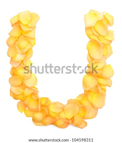 orange rose petals forming letter U, isolated on white
