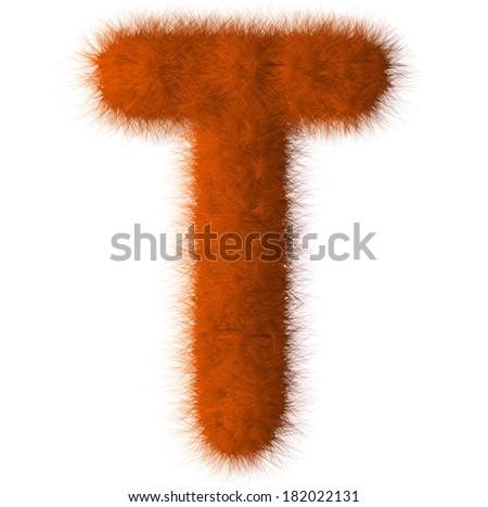 Orange shag T letter isolated on white background - stock photo